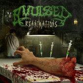 Reanimations