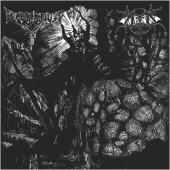 Arckanum / Svartsyn (Kaos Svarta Mar / Skinning The Lambs)