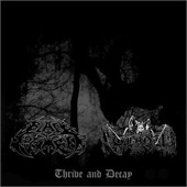 Thrive & Decay (Black September / Thou)