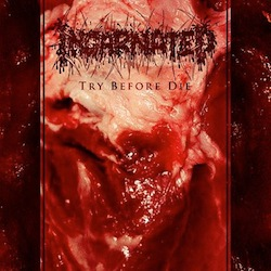 Incarnated - Try Before Die