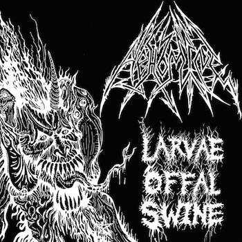 Larvae Offal Swine