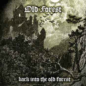Back Into The Old Forest