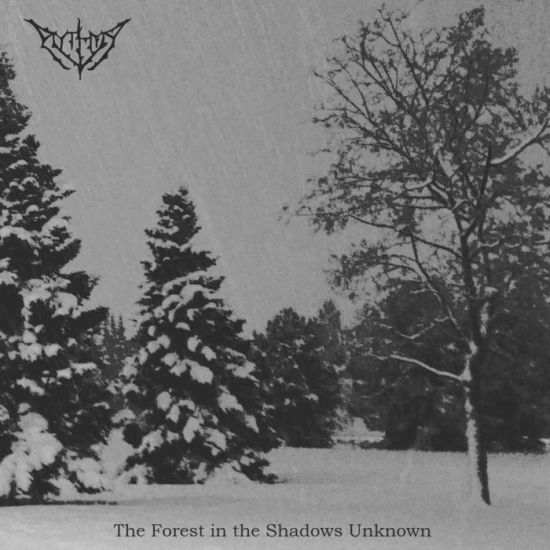 The Forest In The Shadows Unknown